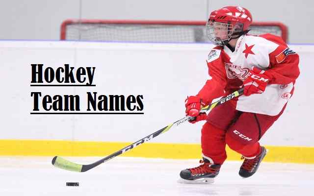 Hockey Team Names For Funny, Cool, Ideas, Best And Fantasy