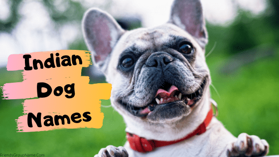 Indian Dog Names, dog