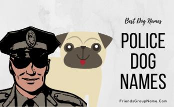 Police Dog Names, dog names