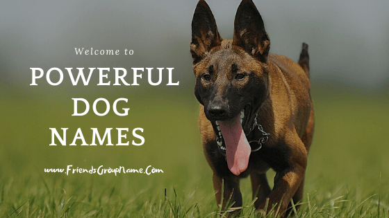 Powerful Dog Names, dog names, dog