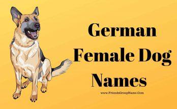 German Female Dog Names